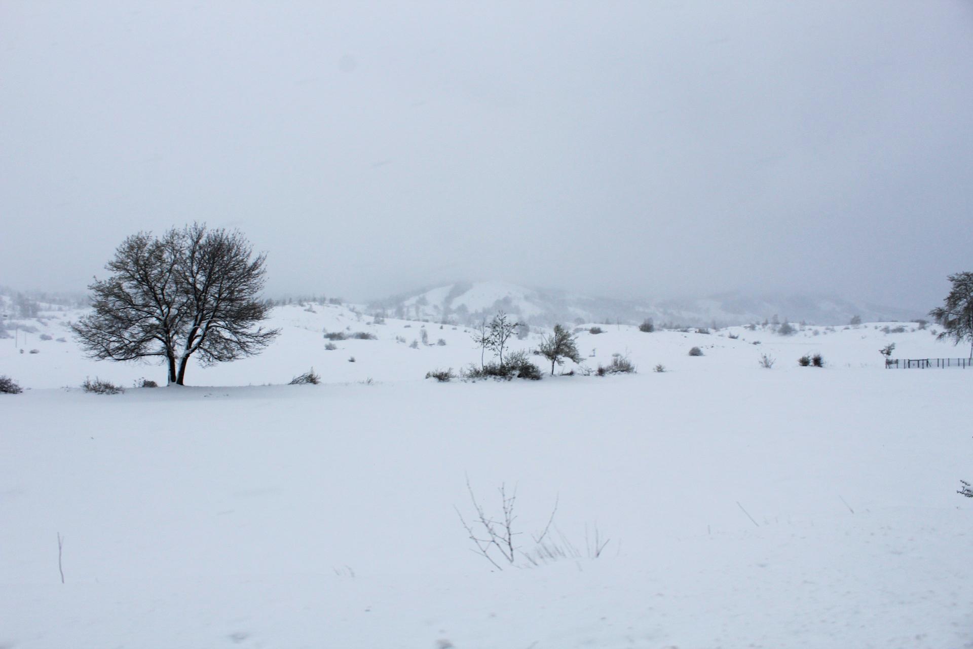 Iako smo iz naše Bosne krenuli lagano obučeni, očekivajući primorsku klimu, na putu nas je zatekla velika mećava, neočišćene ceste i prelijepi sniježni pejzaži Crne Gore.